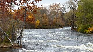 fisherman fishing in salmon river in fall