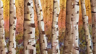 watercolor birch trees in fall