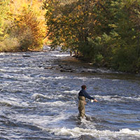 Photo of fishing in Salmon River